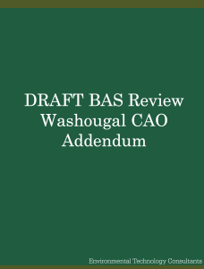 Draft BAS Review – City of Washougal, CAO Addendum